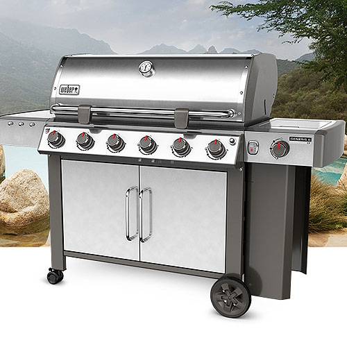 Weber | Product categories | Grill N Propane