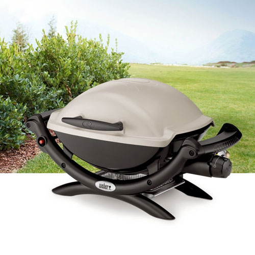 weber q 1000 grill n propane. Black Bedroom Furniture Sets. Home Design Ideas